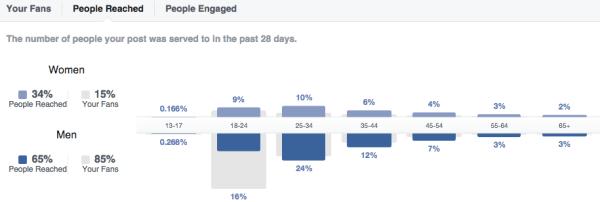 People Facebook - Sanzen Digital